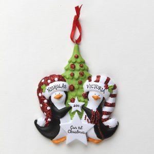 Penguin Couple's 1st Christmas